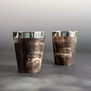 Pair of Horn Beakers
