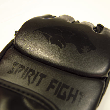 Gant MMA Spirit Fight