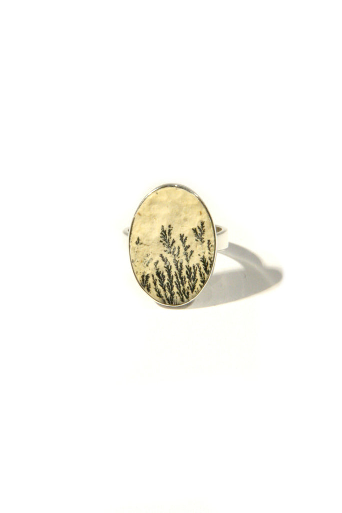 Plant Fossil Ring, $38 | Sterling Silver | Light Years Jewelry