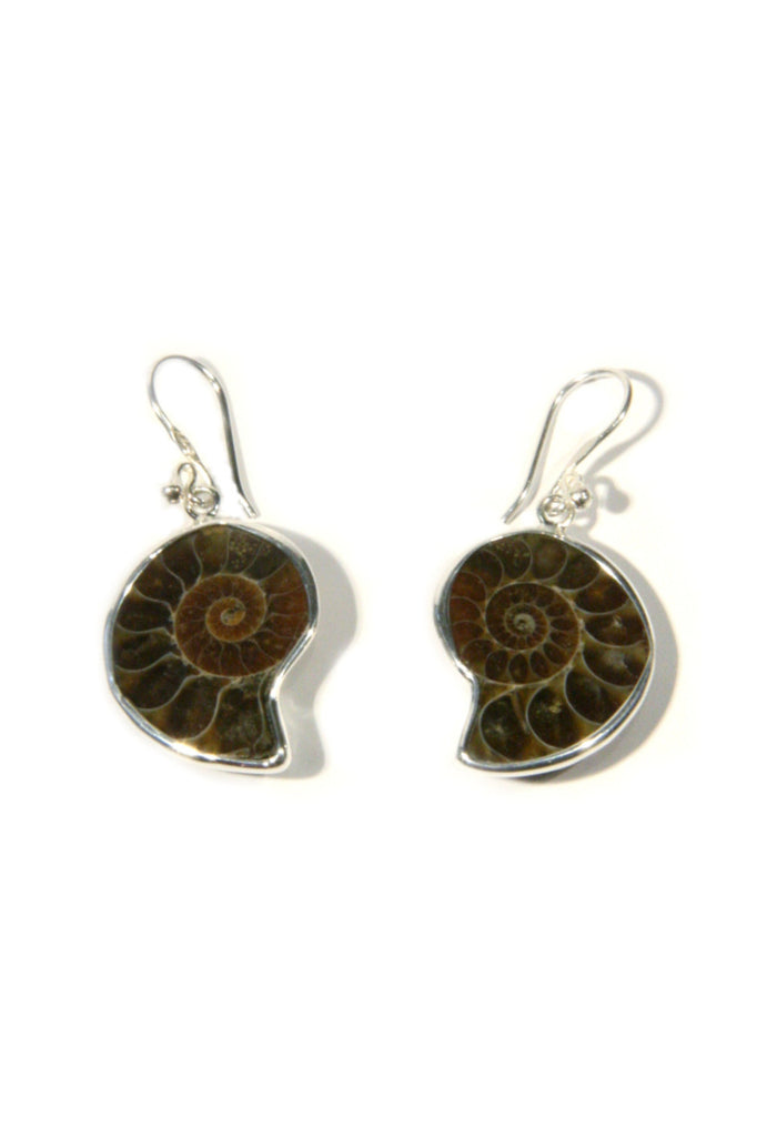 Ammonite Dangles, $24 | Genuine Fossil Earrings | Light Years Jewelry
