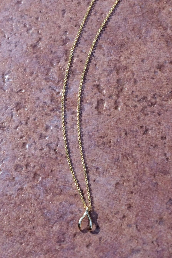 Dainty Wishbone Necklace, $9 | Silver or Gold | Light Years Jewelry