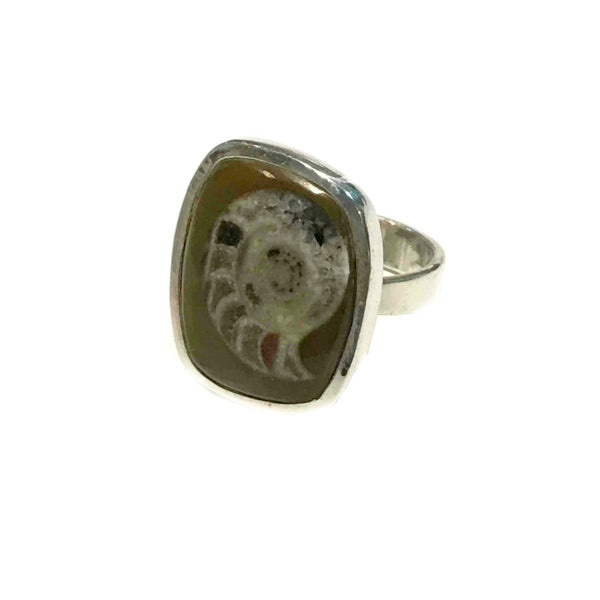 Fossilized Ammonite Ring | Sterling Silver Fossil Size 7 9 | Light Years