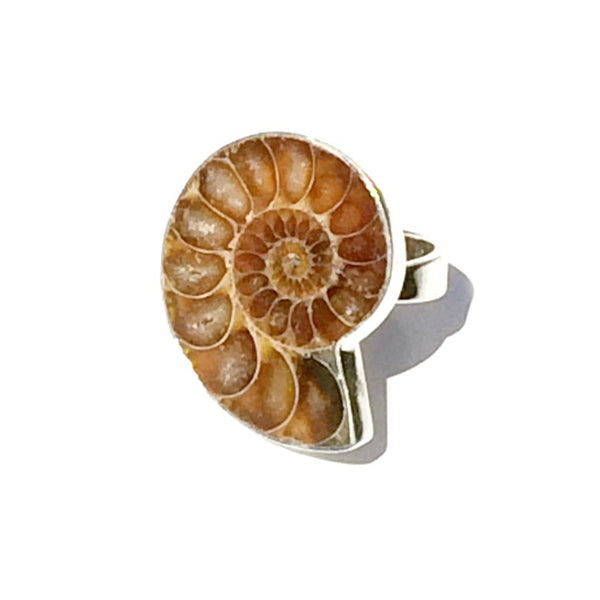 Ammonite Ring, $32 | Sterling Silver Size 6-9 | Light Years Jewelry