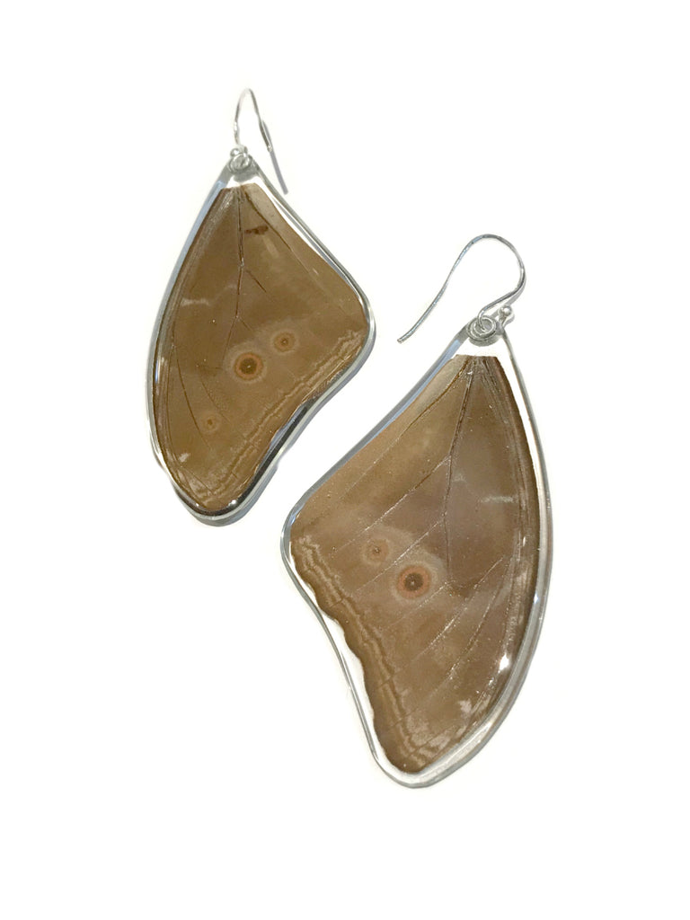 Blue Morpho Butterfly Wing Earrings | Sterling Silver USA | Light Years