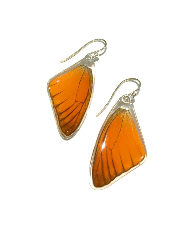 Orange Albatross Butterfly Wing Earrings | Sterling Silver | Light Years