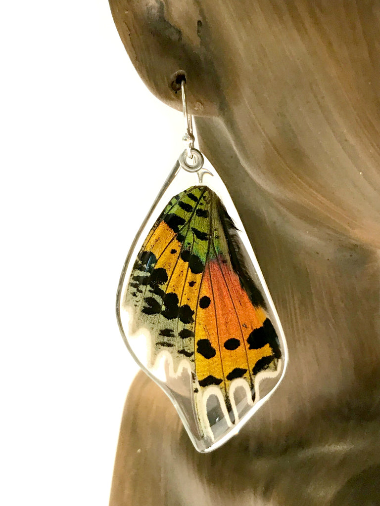 Sunset Moth Dangle Earrings | Sterling Silver USA | Light Years Jewelry