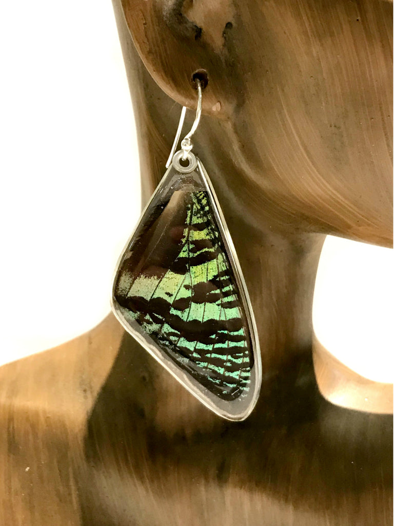 Sunset Moth Wing Earrings | Sterling Silver Danlges USA | Light Years