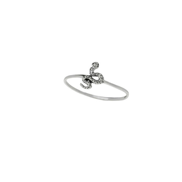 Winding Snake Ring | Sterling Silver Size 6 7 8 9 | Light Years Jewelry