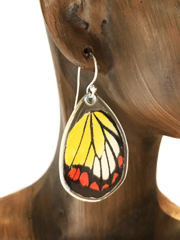 Painted Jezebel Butterfly Wing Dangles | Sterling Silver | Light Years