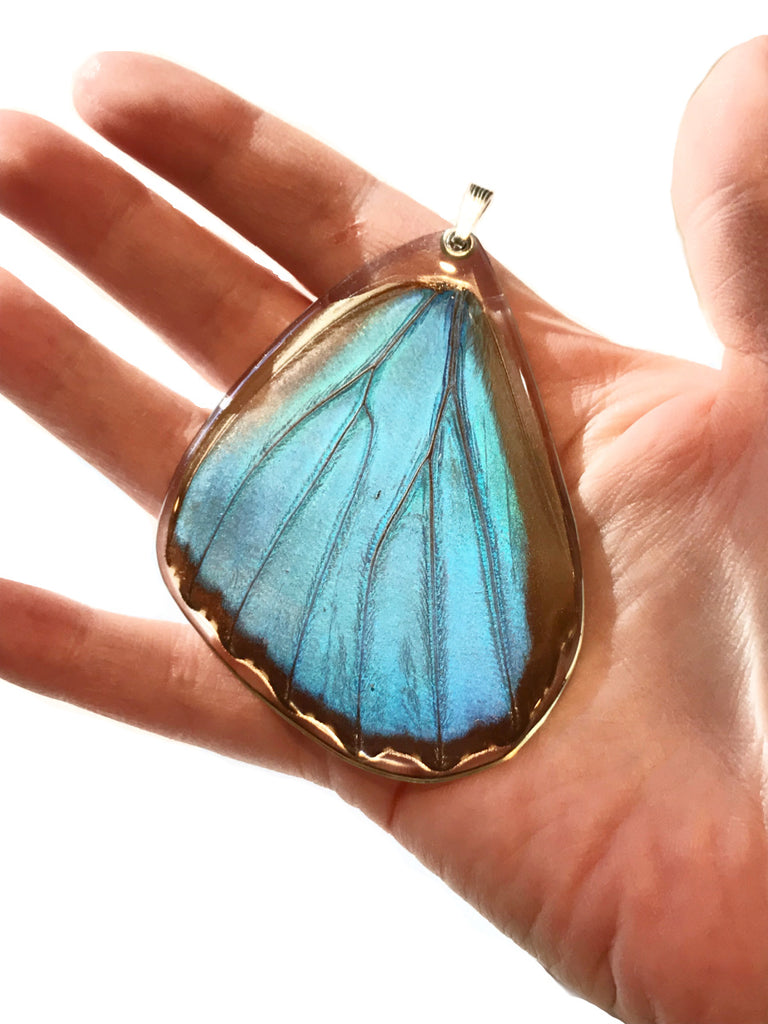 Giant Blue Morpho Butterfly Wing Pendant | Sterling Silver | Light Years