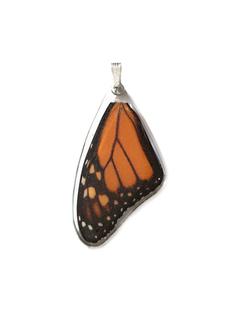 Monarch Butterfly Wing Pendant | Sterling Silver | Light Years Jewelry