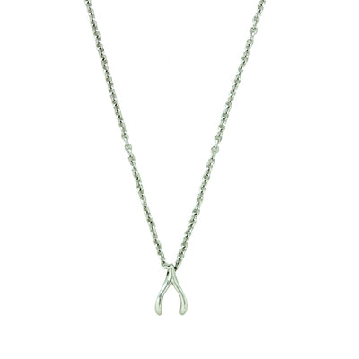 Dainty Wishbone Necklace | Silver or Gold Plated | Light Years Jewelry