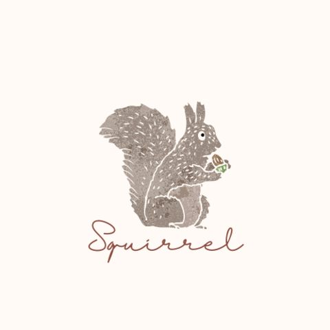 Squirrel.