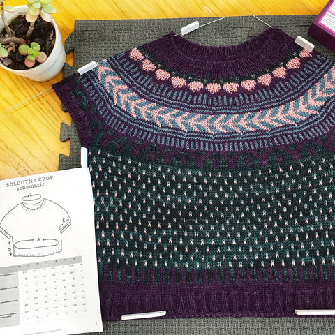 A cropped, cap sleeve sweater with a stranded colorwork yoke and lice-patterned body is blocking on a grey foam mat using blocking wires and blocking combs. There is a small potted jade plant in the upper left, and a copy of the pattern schematic on the lower left.