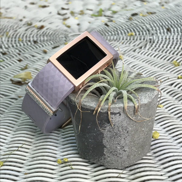 Satin rose gold Madison Frame accessory on black Fitbit Charge 2 with succulent