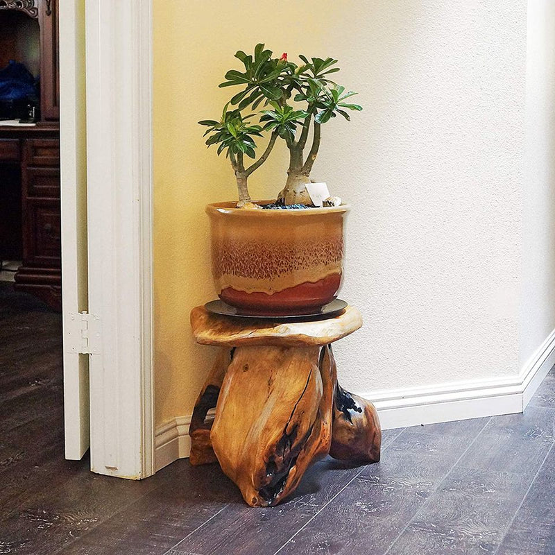 "Tree Stump Stool Live Edge Natural Side Table, Plant Stand, Nightstand, Mushroom Stool 14"" Tall"