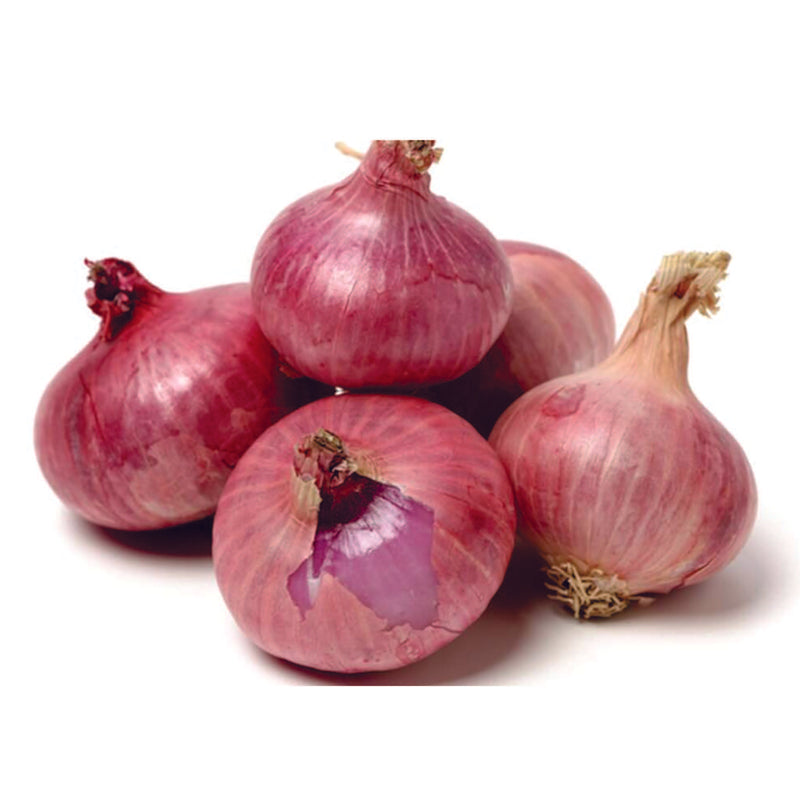 Organic Onion Seeds - Open Pollinated