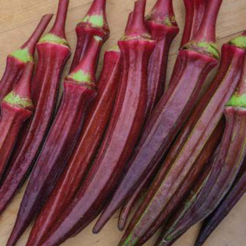 Organic Long Red Okra Seeds - Open Pollinated
