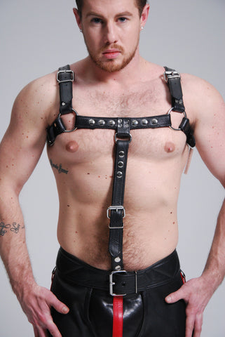 Bulldog Harness Black W/ Cockring