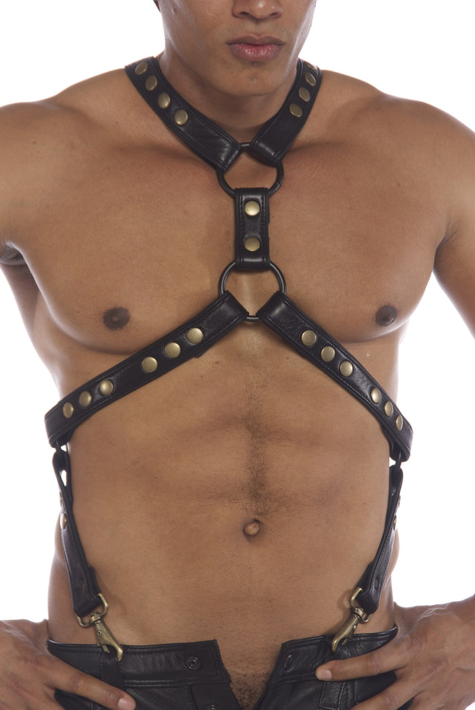 Y Harness with Suspender Straps Antique Brass Hardware 1'