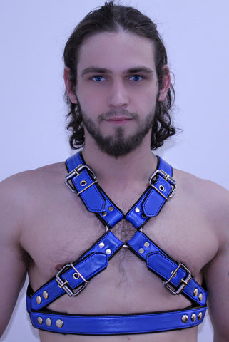 Duncan Black's Hookie's Harness