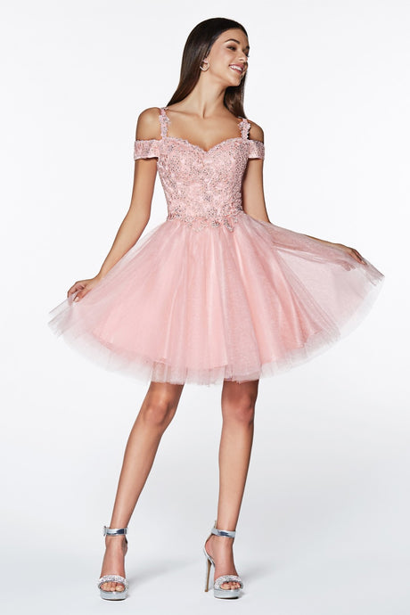 CD CD0132 - Short Homecoming Dress with Off the Shoulder Lace Detail and Glitter Tulle Skirt - Diggz Prom