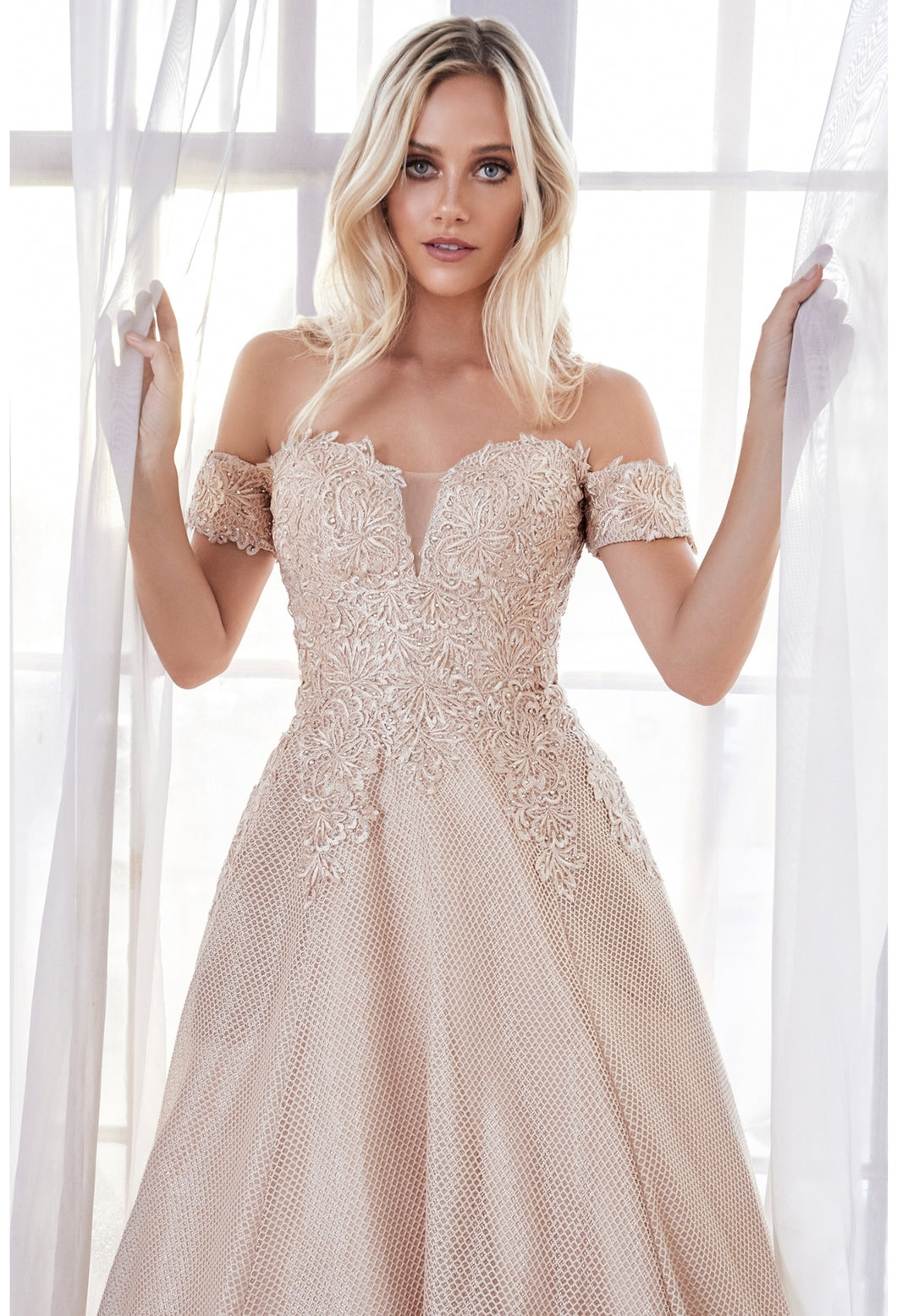Cinderella Divine Chart I CD CD908 - Off the shoulder Ballgown with Lace Applique Bodice & Netted Skirt - Diggz Prom