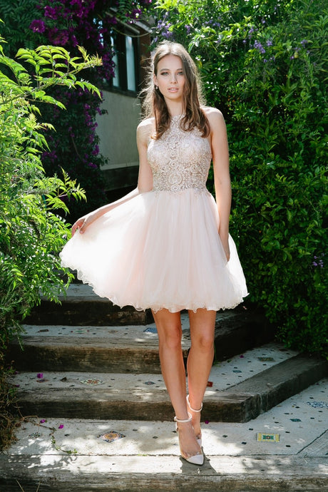 N E696 - Short Tulle Homecoming Dress with Halter Lace Bodice