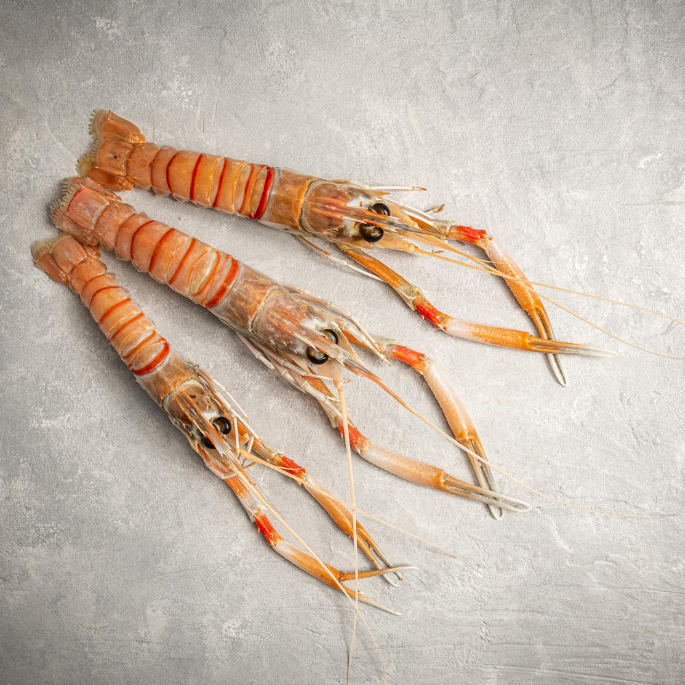 Trio of Langostino by FishFinery
