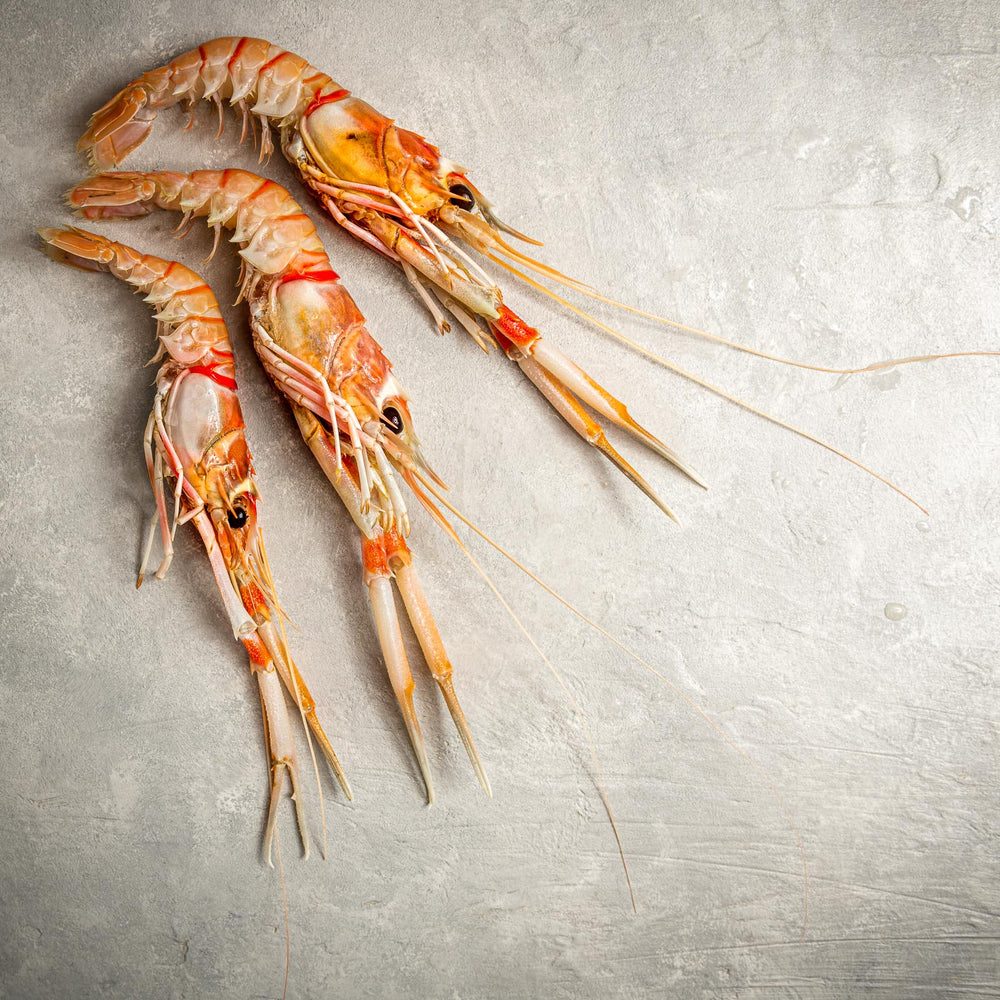 Load image into Gallery viewer, Langostino by FishFinery