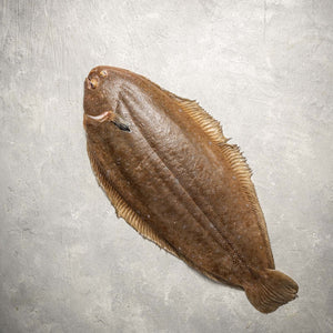 Dover Sole Whole Fish (Wild Caught) by FishFinery