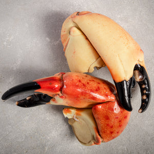 Stone Crab Claws Colossal By Fishfinery