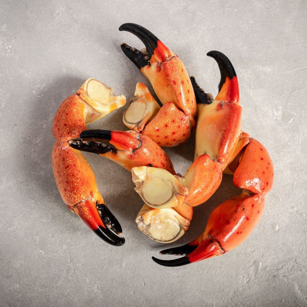 Stone Crab Claws Large By Fishfinery