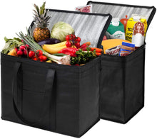 Load image into Gallery viewer, 2 Pack L Insulated Food Delivery Bags Grocery