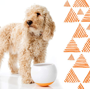 ALL FUR YOU Wobbling Moving Food Bowls-Orange