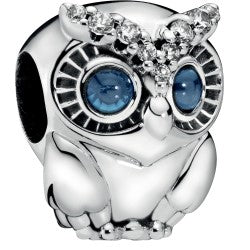 Sparkling Owl Silver Charm