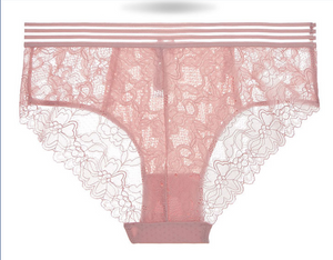 Breathable Hipster Lace Panty - Discreet Playground