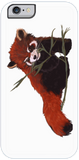 Red Panda Love iPhone Case