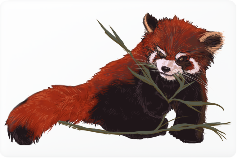 Red Panda Love Laptop Skin