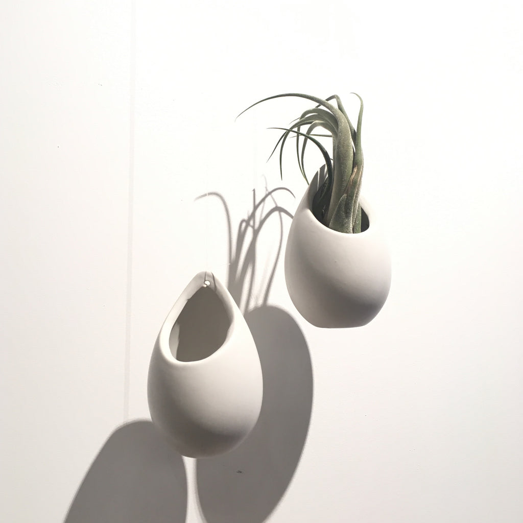 Teardrop airplant hanger