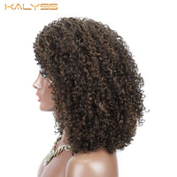 Kalyss 8 Inch Afro Kinky Curly Wigs for Women Synthetic Lace Front Wigs Heat Resistant Long Curly Wavy Wig False Hair