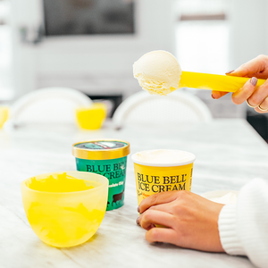 Resin Ice Cream Scoop