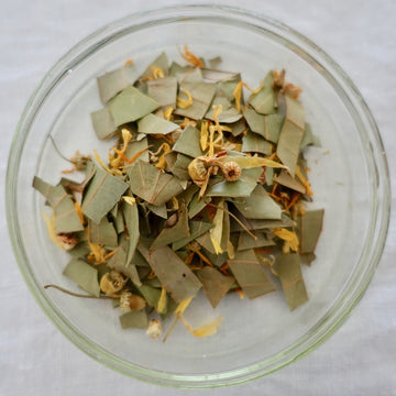 <transcy>SUIGEN TEA --Forest and Flowers--</transcy>