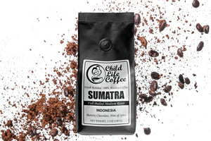 Sumatra Mandheling | Child Life Coffee