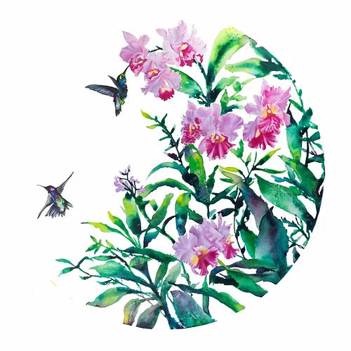 Carla James Hummingbirds and Orchids Print