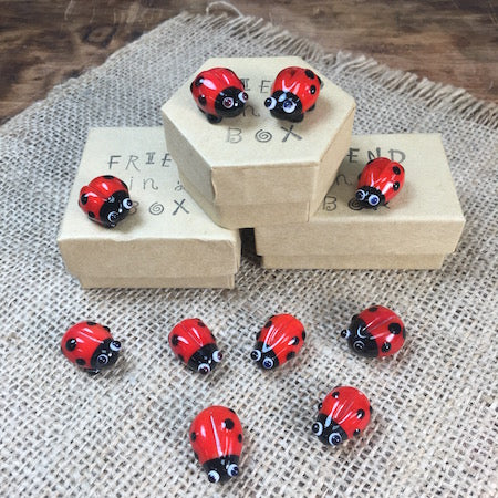 Sue Webb Friends in a box Glass Ladybird.