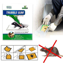 Load image into Gallery viewer, 247 PCI Cardboard Troublegum Small Size Mouse Trap-1pc