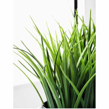 Load image into Gallery viewer, 209 Artificial Plant with Plastic Pot