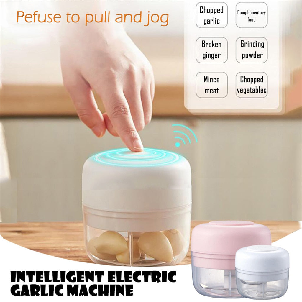 Mini Electric Food Chopper Grinder