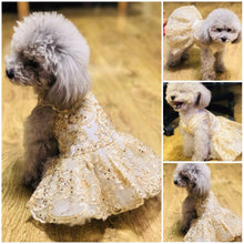 Load image into Gallery viewer, Dog wearing Princess Pet Embroidered Wedding Dress